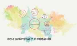 Ciclo Menstrual y fecundación