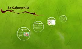 La Salmonella