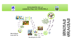 Evolución de la Agricultura en Venezuela