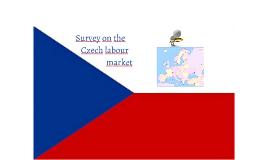 Survey on the Czech labour market