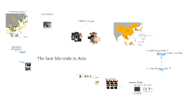 Copy of The bear bile trade in Asia