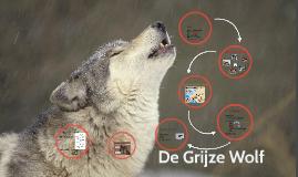 De Grijze Wolf