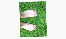 The Art of Barefoot Running