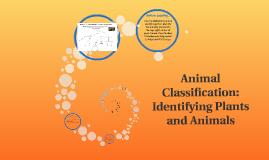 Animal Classification: