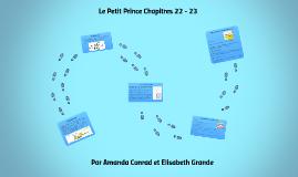 Le Petit Prince Chapitres 22-23