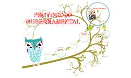 Copy of PROTOCOLO GUBERNAMENTAL