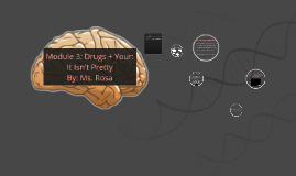 Module 3: Your Body on Drugs