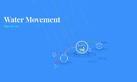 Ch 7:1 Water Movement