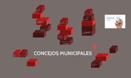 CONCEJOS MUNICIPALES