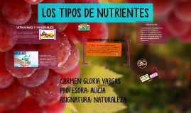 LOS TIPOS DE NUTRIENTES