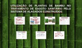UTILIZAÇÃO DE PLANTAS DE BAMBU NO TRATAMENTO DE ESGOTO SANITÁRIO PELO SISTEMA DE ALAGADOS CONSTRUÍDOS