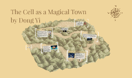 The Cell as a fantasy town