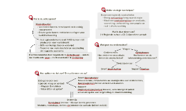 RAAK Logical Framework sep