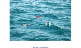 Wasserkraft im Meer