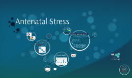 Antenatal Stress