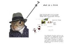 mammals of ohio
