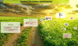 Copy of TRANSIÇÕES ENTRE HORIZONTES