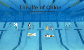 Copy of The life of Chloe