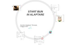 Start bun in alaptare