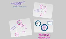 Copy of Programa de incentivos prestaciones y servicios