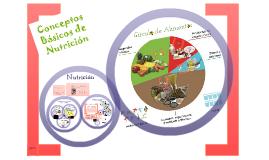 Conceptos básicos sobre nutrición