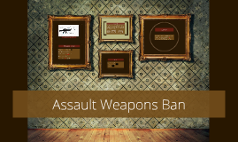 Assualt Weapons Ban 2013