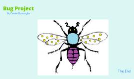Bug Project