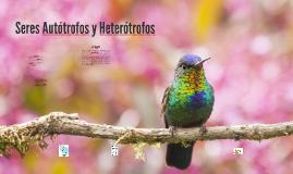 Seres Autótrofos y Heterótrofos