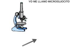 YO ME LLAMO MICROGLIOCITO