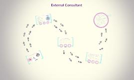 External Consultant