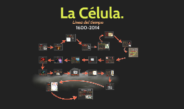 Copy of Copy of La Célula.