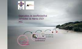 Copy of Expresión emociones. Madrid. Marzo 2013