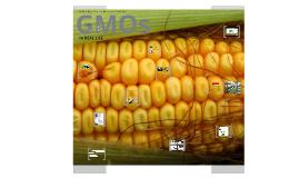 Copy of GMO