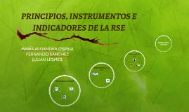 Copy of PRINCIPIOS, INSTRUMENTOS E INDICADORES DE LA RSE