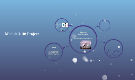 Module 3.10: Project