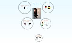 didactiek webchair