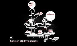 vad är ett projekt?