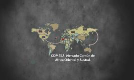 Copy of COMESA: Mercado Comun de Africa Oriental y Austral.