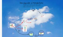 Introducción al Metabolismo TyE