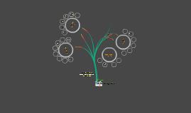 Copy of خطة أمانة جمعية مراكز الأحياء