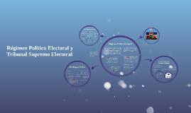 Copy of Regimen Político Electoral y Tribunal Supremo Electoral