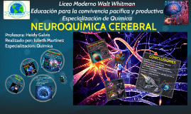 Copy of NEUROQUIMICA CEREBRAL