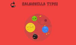 Salmonella Typhi 2