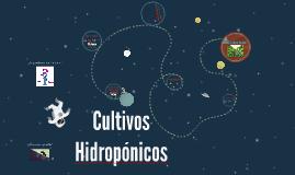 Cultivos Hidropónicos para niños