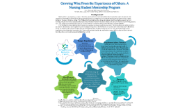 Growing Wise From the Experiences of Others: A Nursing Student Mentorship Program