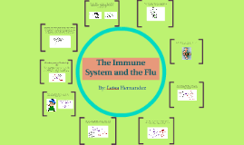 The Immune System and the Flu