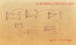 LA NORMA JURÍDICA (III)