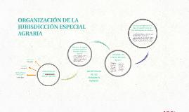 ORGANIZACIÓN DE LA JURISDICCIÓN ESPECIAL AGRARIA