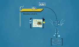 Review Level 6