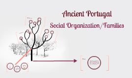 Copy of Social Organization and Families